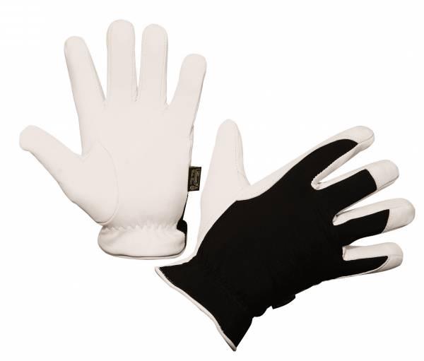 Aktion Handschuh Winter Racer