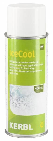 Kühlspray IceCool