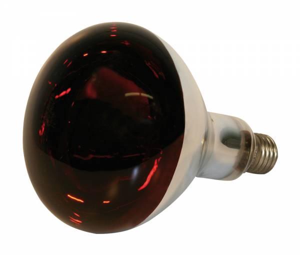 Hartglas-Infrarotlampe KERBL rot