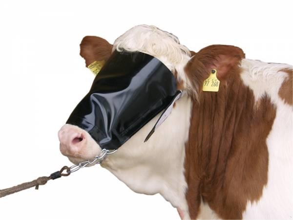 Viehblende aus Nylon mit Halfter und Kinnkette